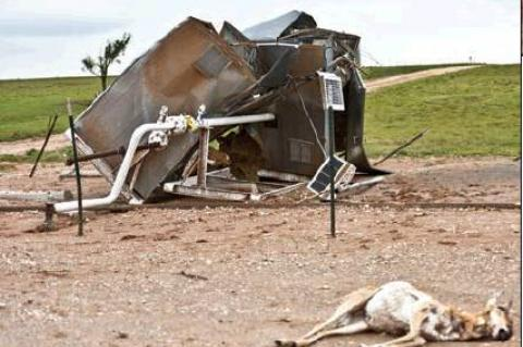 Thursday's tornado caused havoc at this FourPoint location just off the Booker Highway, twisting heavy metal oil tanks and ladder (at top), and mangling a meter house (above). Even this pronghorn antelope, lying in the foreground, could not outrun the twister's deadly reach.