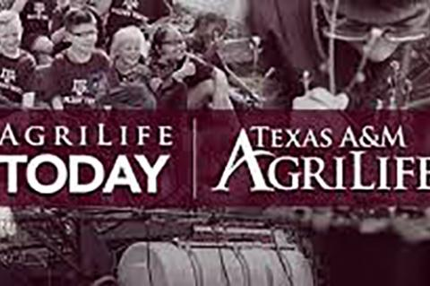 AgriLife releases publications on High Plains agriculture and health